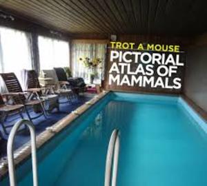 Trot A Mouse - A Pictorial Atlas of Mammals - Skirl Records